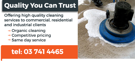 carpet cleaners services